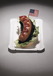 American flag on hot dog in plate, close up - WBF000314