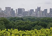 USA, New York, View of city skyline - WBF000342