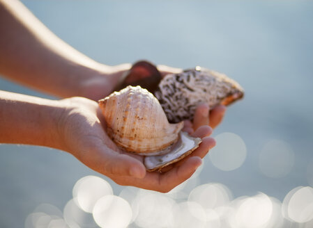 Croatia, Zadar, Girl holding shells at beach - HSIF000034