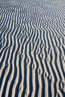 Germany, Schleswig-Holstein, Foehr, Background of mud flat - MUF000886