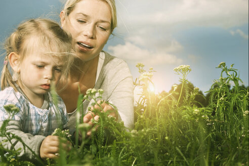 Germany, Cologne, Mother and daughter (2-3 Years) plucking flower - WESTF015635