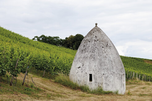 Europe, Germany, Rhine Hesse, View of vineyard with trullo house - CS014666