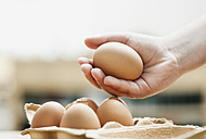 Germany, Cologne, Human hand holding eggs, close up - WESTF016269