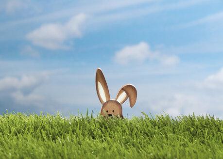 Germany, Easter bunny figure in meadow - WBF000961