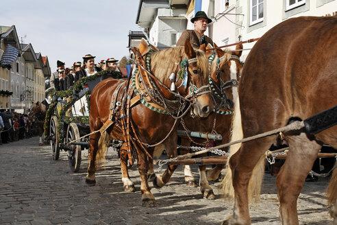 Germany, Upper Bavaria, Bad Tölz, Horsedrawn at Leonhardi parade - SIE001156