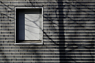 Germany, Munich, Bricked wall house with shuttered window - TC001439