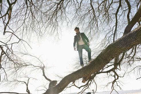 Germany, Hamburg, Man standing on tree branch - DBF000143