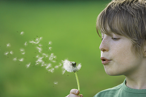 Germany, Close up of boy blowing dandelion seeds - TCF001520