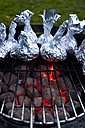 Germany, North Rhine-Westphalia, Düsseldorf, Close up of onions in aluminium foil on grill - KJF000083