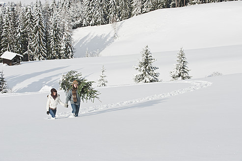 Austria, Salzburg Country, Flachau, Young man and woman carrying christmas tree in snow - HHF003667