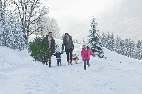 Austria, Salzburg Country, Flachau, View of family carrying christmas tree and sledge in snow - HHF003718