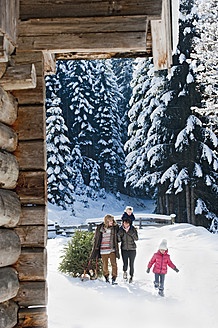 Austria, Salzburg Country, Flachau, View of family carrying christmas tree and sledge in snow - HHF003726