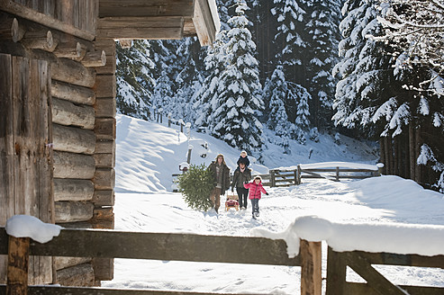 Austria, Salzburg Country, Flachau, View of family carrying christmas tree and sledge in snow - HHF003729