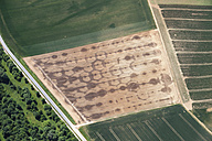 Europe, Germany, North Rhine-Westphalia, Aerial view of wet field due to irrigation plant - CS015308