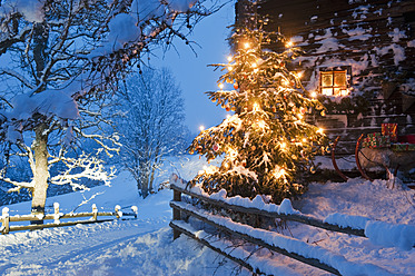 Austria, Salzburg Country, Flachau, View of illuminated christmas tree with sleigh in front of alpine hut at dusk - HHF003763