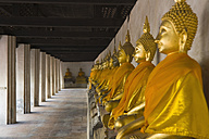 Thailand, Ayutthaya, Row of buddha statues in temple - HKF000451