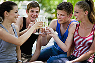 Italy, Tuscany, Friends clinking champagne glasses at picnic - HSIF000131