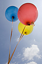 Germany, Bavaria, Three coloured balloons in blue sky - CRF002102