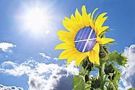 Germany, Sunflower with solar panel against blue sky with sun - TSF000351