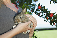 Italy, Tuscany, Young woman holding rabbit, close up - PDF000161
