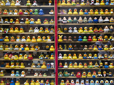 Germany, Hessen, Frankfurt, Variety of rubber duck toys on window display - MU001072