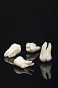 Wisdom tooth on black background - MUF001075