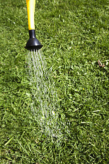 Germany, Hamburg, Water flowing out of watering can on grass - DBF000174