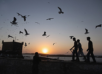 Morocco, Essaouira, People at harbour with seagulls flying during sunset - BSC000090