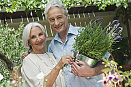 Germany, Bavaria, Man and woman with potted plants, smiling, portrait - WESTF017658