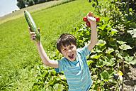 Germany, Bavaria, Boy holding vegetables in garden, smiling, portrait - WESTF017718