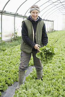 Germany, Upper Bavaria, Weidenkam, Mature woman working in greenhouse of endive - TCF002091