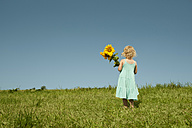 Germany, Bavaria, Girl standing in grass with sunflower - RNF000732