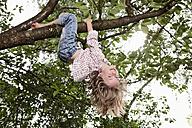 Germany, Bavaria, Munich, Girl hanging on tree, smiling - RBF000792