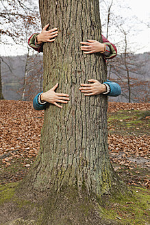 Germany, Berlin, Wandlitz, Couple hugging tree - WESTF018252