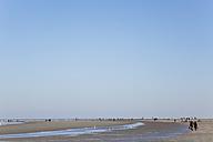 Belgium, Flanders, People walking on beach - GWF001663
