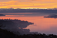 Germany, View of Lake Constance and Swiss Alps at morning twilight - SH000629