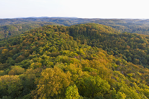 Germany, Thuringia, Eisenach, View of Thuringian Forest - WDF001183