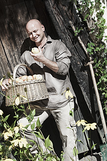 Austria, Salzburg, Flachau, Mature man with apples in garden - HHF003850