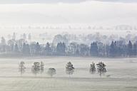Germany, Bavaria, View of foggy landscape - FOF003844