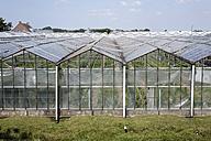 Netherlands, Zeeland, View of glass house - ANB000037