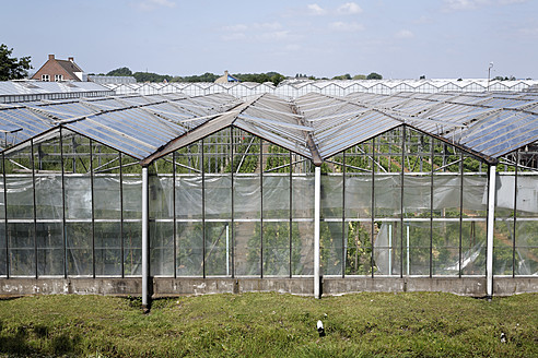 Netherlands, Zeeland, View of glass house - ANB000037