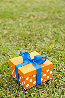Spain, Mallorca, Gift box on grass, close up - MFPF000040