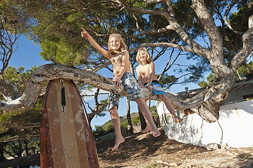 Spain, Mallorca, Children sitting on tree - MFPF000070
