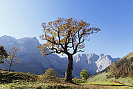 Austria, Tyrol, View of Karwendel Mountains in autumn - SIEF002324