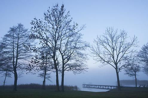 Austria, View of foggy Mondsee Lake during autumn - WWF002206
