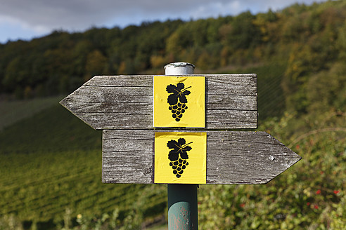 Germany, Bavaria, Oberschwarzach, Sign post for wine hiking trail - SIEF002395