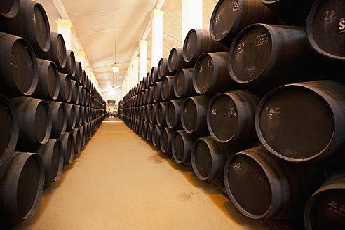 Spain, Row of  wine cellar - DS000270