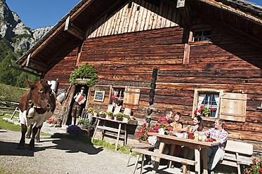 Austria, Salzburg County, Men and women sitting and drinking at alpine hut, musician in background - HHF004029