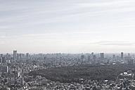 Japan, Tokyo, View of city skyline - FLF000031