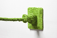 Power outlet covered with grass against white background - RBF000807